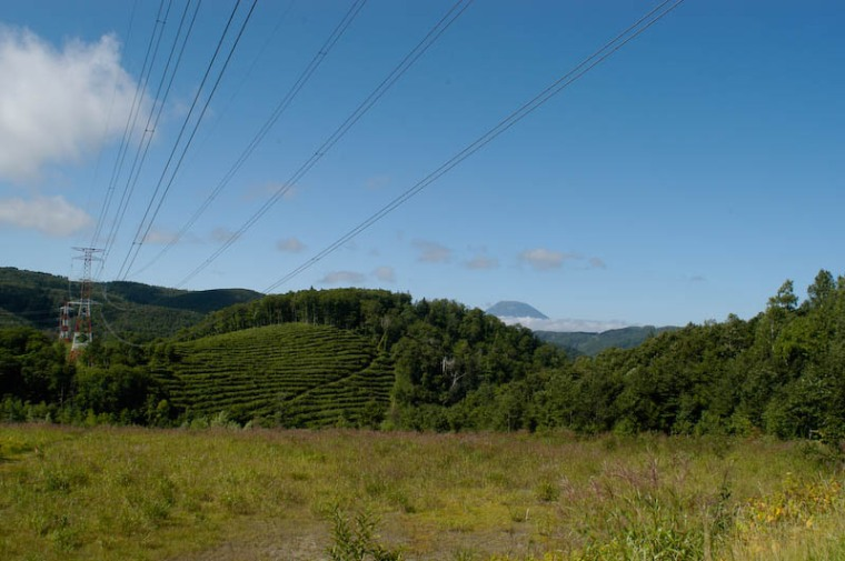 I do like photographing power lines.